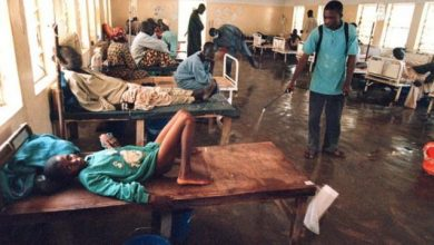 Photo of Cholera kills 88 –