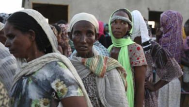 Photo of 23 humanitarians killed since the start of the crisis in Tigray –