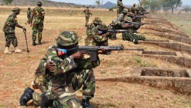 Photo of 48 Boko Haram terrorists killed by Nigerian army –